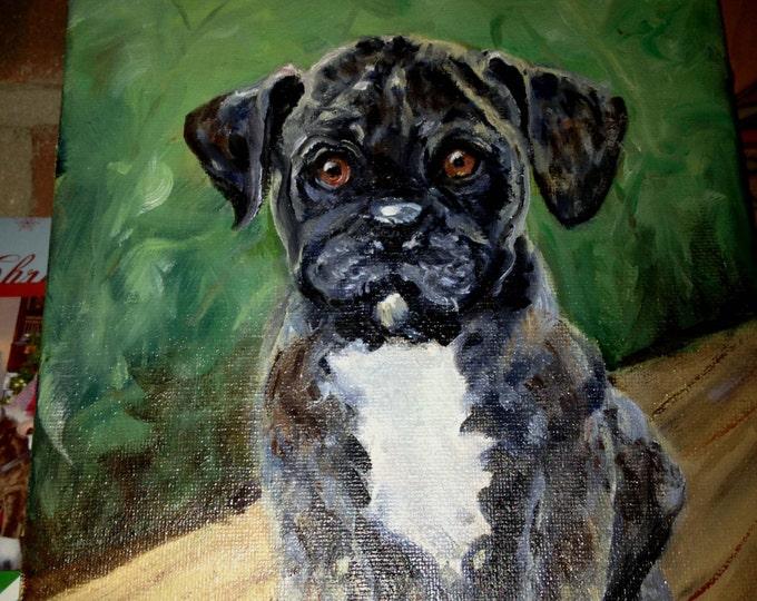 Custom Pet Portrait, Custom Dog Portrait, Puppy Painted Portrait, Bulldog painting, pet lover gift Robin Zebley Gift Certificate