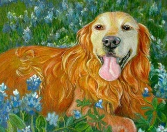 Small Custom Pet Portrait, Golden Retriever or Any Breed, Colored Pencil Drawing by Artist Robin Zebley