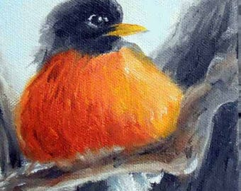 "Robin Bird Art Print from Oil Painting by Artist Robin Zebley, 8"" x 10"", American Wildlife Gift Certificate"