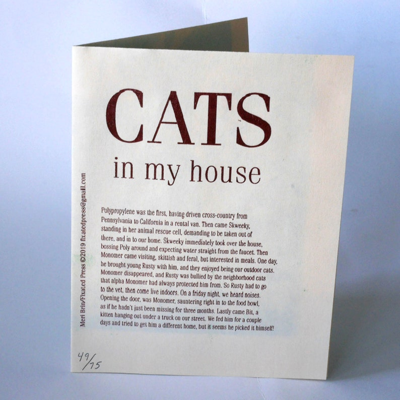 Cats in My House Zine  Risograph printed  single page image 0