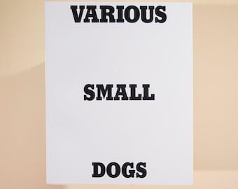 Various Small Dogs by Dan Varenka childrens Ed Ruscha rip off