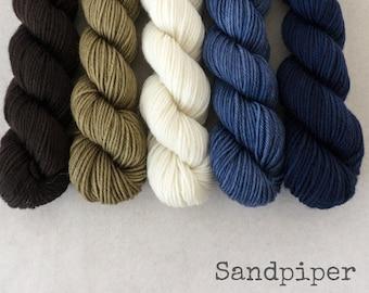 Mini Skeins - Gradient Handpainted Fingering Yarn - Simply Sock - 100 gm set - SANDPIPER - Merino Nylon Sock Yarn