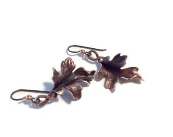 Bronze Maple Leaf Earrings - hand hammered