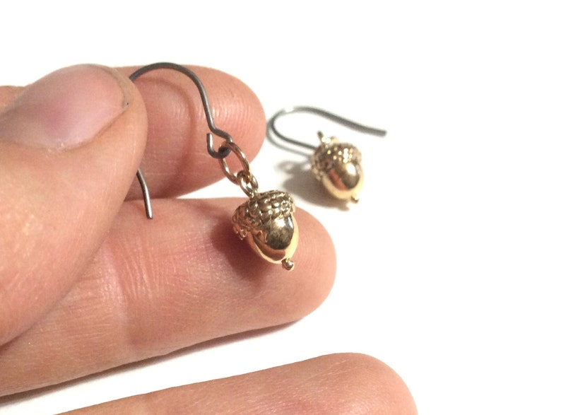 Delicate brass acorn earrings on hypoallergenic titanium image 0