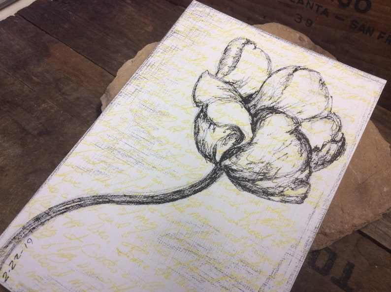 tulip drawing ink on paper over art journal text 4 x 6 image 0