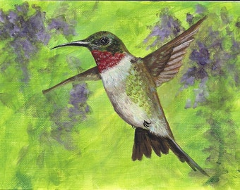 Hummingbird and wisteria aceo limited edition