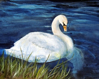White swan swimming on lake 8x10 print on linen card stock