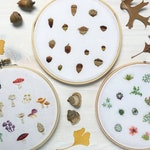 Tiny Mushrooms, Succulents and Acorns Hand Embroidery Patterns set of 3 Embroidery Hoop Art designs