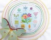 Stitch Sampler Beginner Embroidery design, printed Hand Embroidery Hoop Art Design, DIY Sampler