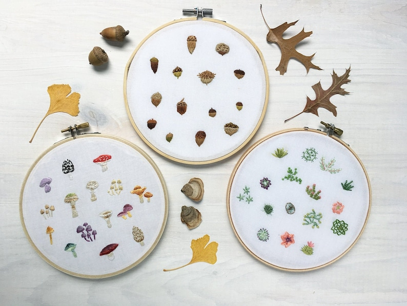Tiny Mushrooms Succulents and Acorns Hand Embroidery Patterns image 0