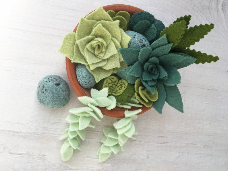 Felt Succulents Cactus Sewing Pattern PDF download felt image 0