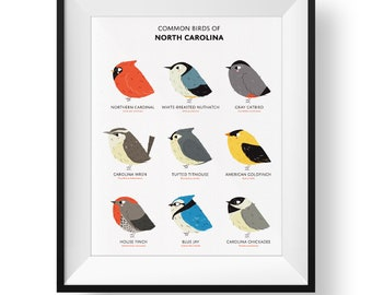 Common State Birds of North Carolina Art Print • Illustrated Chubby Bird Print • North Carolina Field Guide