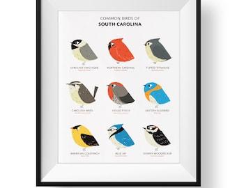 Common State Birds of South Carolina Art Print • Illustrated Chubby Bird Print • South Carolina Field Guide