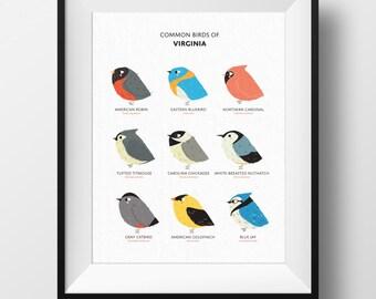 Common State Birds of Virginia Art Print • Illustrated Chubby Bird Print • Virginia Field Guide