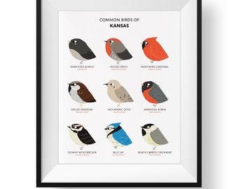Common State Birds of Kansas Art Print • Illustrated Chubby Bird Print • Kansas Field Guide