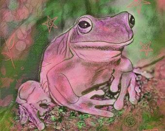 Filbert the Frog Greetings/Note Card