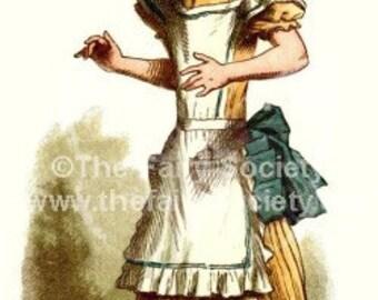 Alice In Wonderland Fabric Block Tall Alice