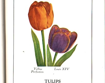 All About Flowering Bulbs For Home and Garden + T. A. Weston + 1931 + Vintage Book