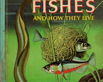 Fishes and How They Live Golden Library of Knowledge + George S. Fichter + Rene Martin and James Gordon Irving + 1960 + Vintage Kids Book