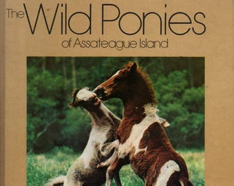 The Wild Ponies of Assateague Island + Donna K. Grosvenor + James L. Stanfield (photographs) + 1975 + Vintage Kids Book