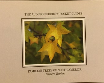 Familiar Trees of North America * Eastern Region * The Audubon Society Pocket Guides * First Printing * Knopf * Vintage Reference Book