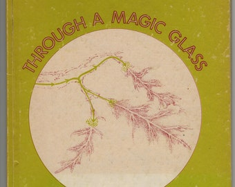 Through A Magic Glass * Solveig Paulson Russell * Betty Fraser * Ginn and Company * 1972 * Vintage Kids Book