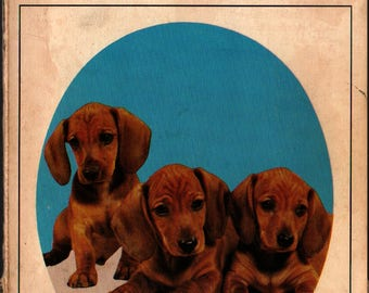 Know Your Dachshund + Earl Schneider  + Vintage Guide Book