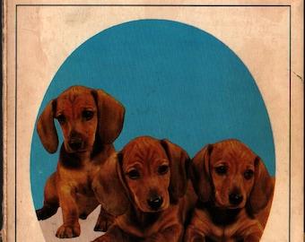 Know Your Dachshund + Earl Schneider  + Vintage Guide Book