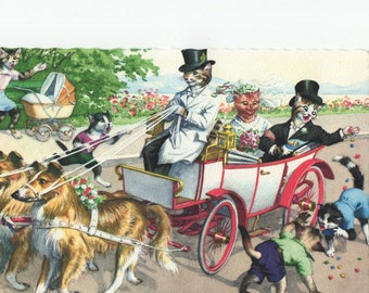 Mainzer Cats * Wedding Carriage Pulled By Collies * 4920 * Eugen Hartung * Unused * Vintage Postcard * Deckle Edge