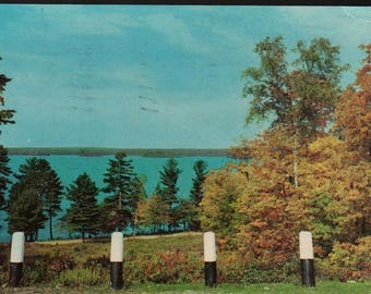 Green and Gold * Lake Region * Gaylord, Michigan * 1958 * Vintage Kodachrome Postcard