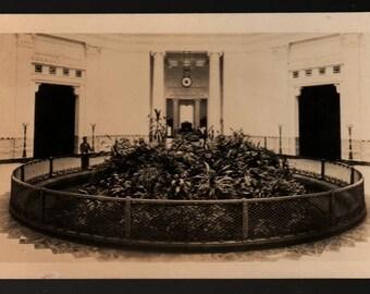 The John G. Shedd Aquarium – Chicago, Illinois – Vintage Photo Postcard