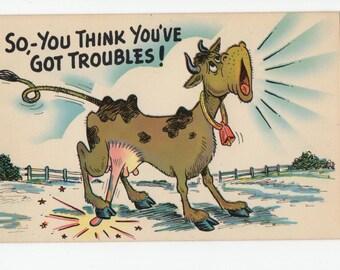 Cow Humor * You Think You've Got Troubles * Plastichrome * Vintage Postcard