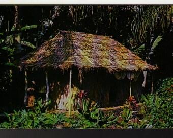 The Waioli Tea Room + Grass Hut + Manoa Valley, Honolulu, Hawaii + Vintage Souvenir Postcard