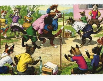 Mainzer Cats * Backyard Brawl * Boxing * 4711 * Eugen Hartung * Alfred Mainzer * Unused * Vintage Postcard * Deckle Edge