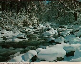 Winter Scene on Little Pigeon River + Great Smoky Mountain National Park + Vintage Souvenir Postcard