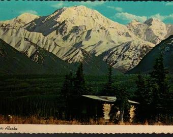 Alaskan Homestead Cabin * Alaska Joe Original * Vintage Curteich Postcard