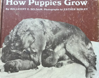 How Puppies Grow * Millicent E Selsam * Esther Bubley, Photographer * Four Winds Press * 1971 * Vintage Kids Book