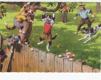 Mainzer Cats * Apple Orchard Thieves * 4867 * Eugen Hartung * Belgium * Unused * Vintage Postcard * Deckle Edge