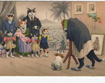 Mainzer Cats * Family Photograph * 4724 * Alfred Mainzer * Eugen Hartung * Max Kunzli * Switzerland * Unused * Vintage Postcard, Deckle Edge