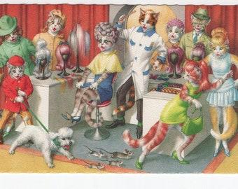 Mainzer Cats * Wig Shop * 4982 * Eugen Hartung * Unused * Belgium * Vintage Postcard * Deckle Edge