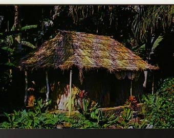 The Waioli Tea Room * Grass Hut * Manoa Valley, Honolulu, Hawaii * Vintage Souvenir Postcard