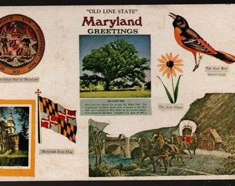 "Maryland Greetings * ""Old Line State"" * Vintage Souvenir Postcard"