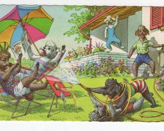 Mainzer Dogs * Poodles in the Backyard * 4918 * Eugen Hartung * Belgium * Unused * Vintage Postcard * Deckle Edge