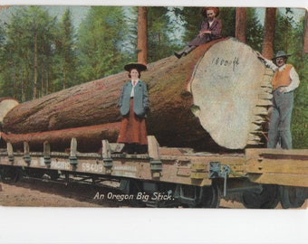 Oregon * Logs * Big Stick * Canceled Stamp * 1910 * Vintage Postcard