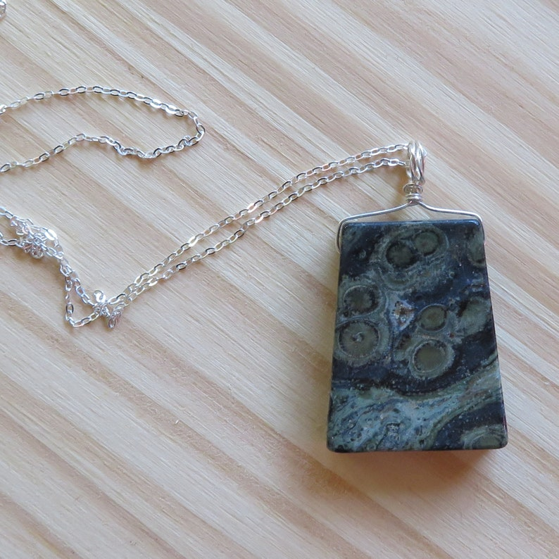 Ryolite Pendant wrapped in Sterling Silver on Sterling Silver image 0