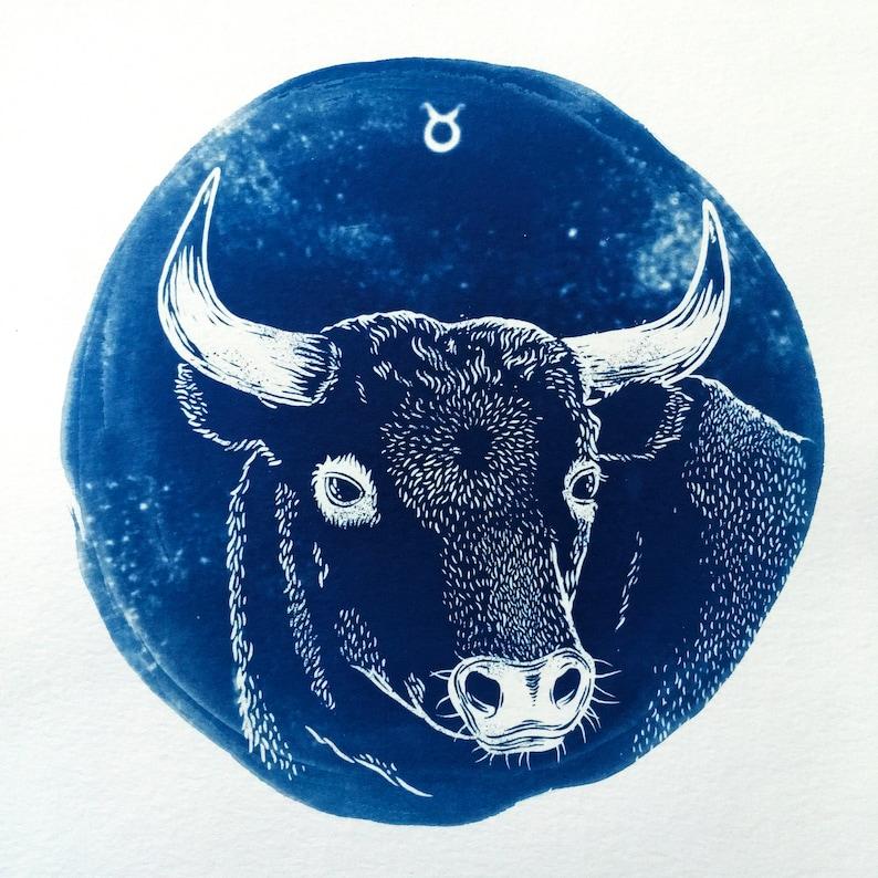 TAURUS cyanotype print \u2013 original zodiac illustration