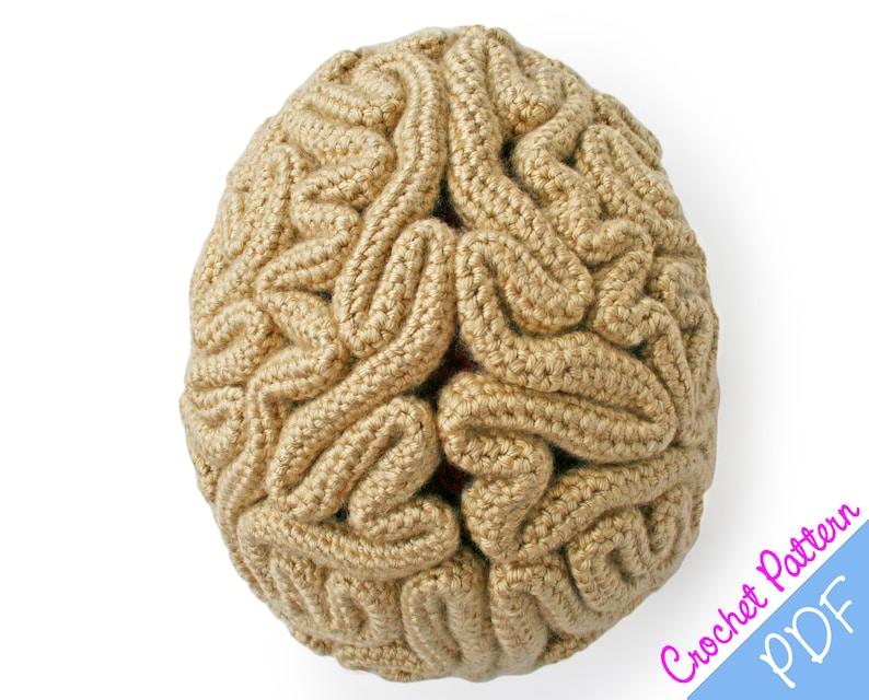50d13c73560 Crochet Pattern Brain Beanie Brain Hat Crochet Brain