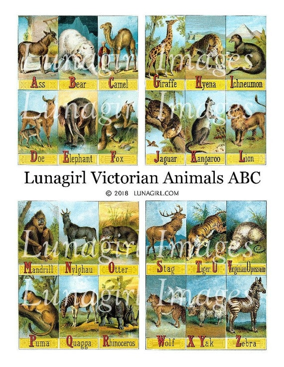 Vintage Victorian//Edwardian Illustrated Childrens ABC of Animals Nursery Prints