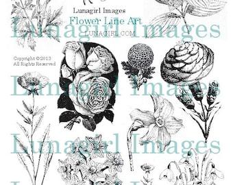 VINTAGE FLOWERS digital collage sheet, Victorian Art Floral Drawings, black & white wildflowers, Woodland Garden printable ephemera DOWNLOAD