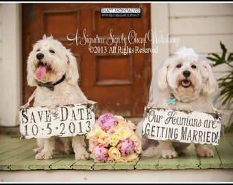 Save The Date Signs for the Dogs | Our Humans Are Getting Married | Photo Props for Dogs | Rustic Save The Date Ideas | Rustic Wedding